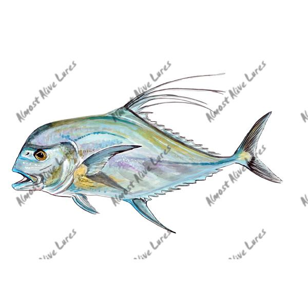 African Pompano - Printed Vinyl Decal