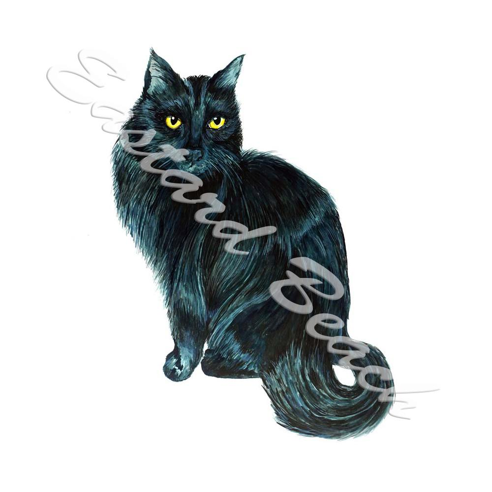 Black Cat - Printed Vinyl Decal
