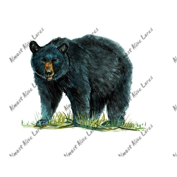 Black Bear - Printed Vinyl Decal