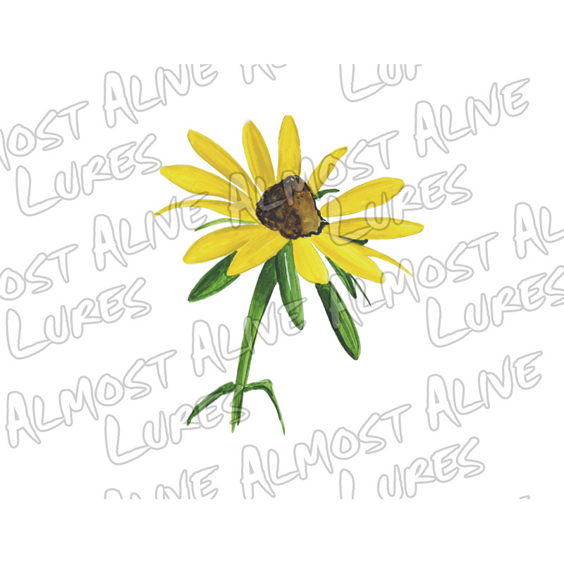 Black Eyed Susan - Printed Vinyl Decal