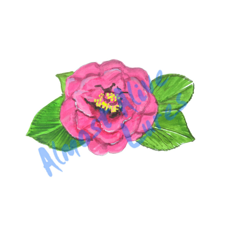 Camellia Flower - Printed Vinyl Decal
