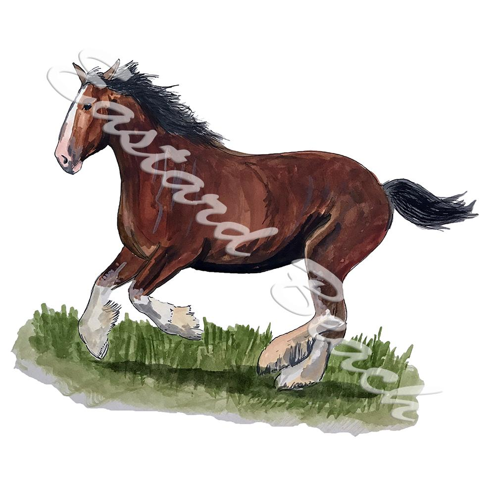 Clydesdale Horse Running