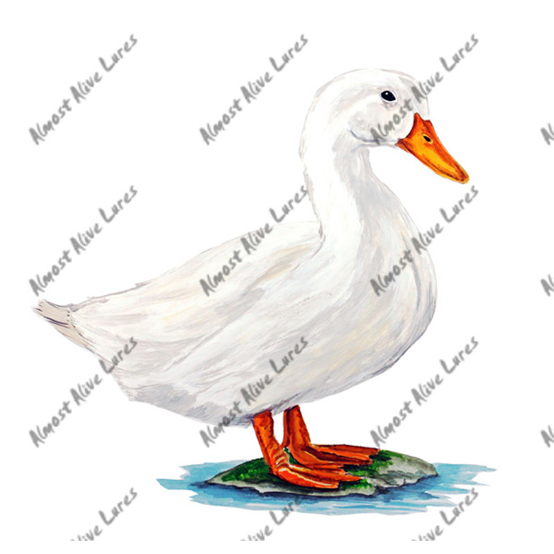 Duck - Printed Vinyl Decal