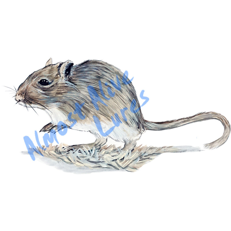 Gerbil - Printed Vinyl Decal