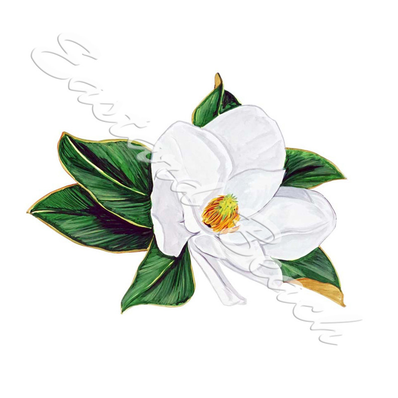 Magnolia - Printed Vinyl Decal