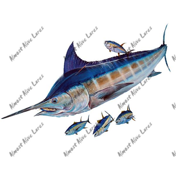Blue Marlin & Tuna - Printed Vinyl Decal