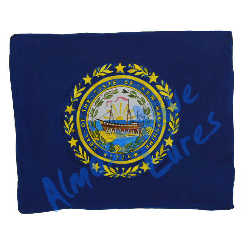 New Hampshire State Flag - Printed Vinyl Decal