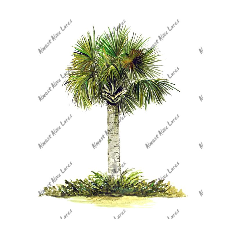 Palm Tree - Printed Vinyl Decal