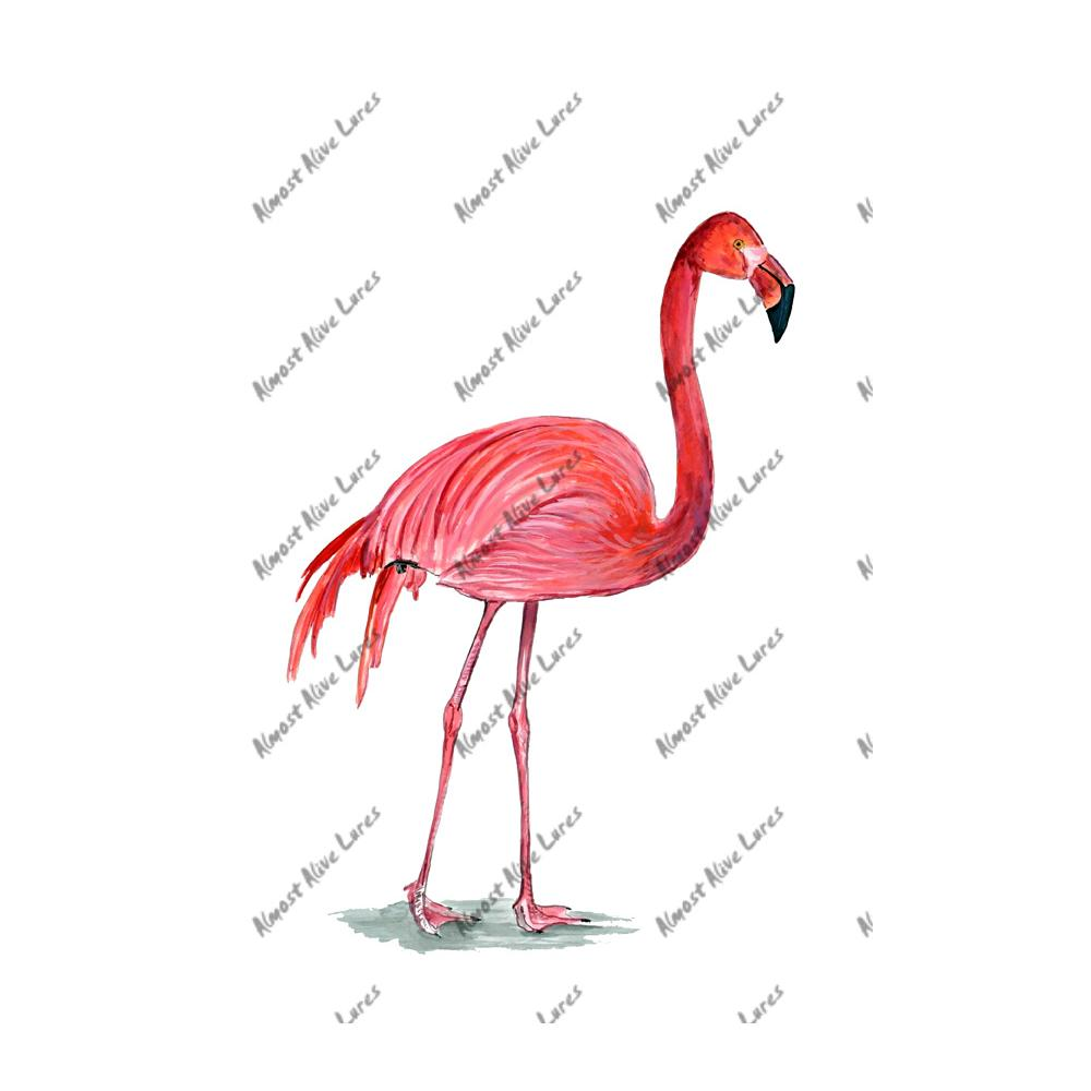 Pink Flamingo - Printed Vinyl Decal