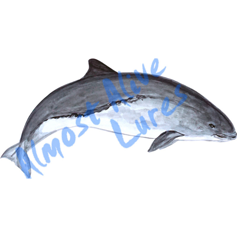 Porpoise - Printed Vinyl Decal