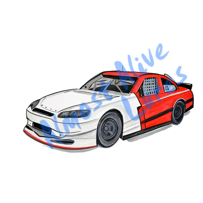 Race Car - Printed Vinyl Decal
