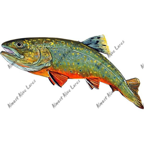 Brook Trout - Printed Vinyl Decal