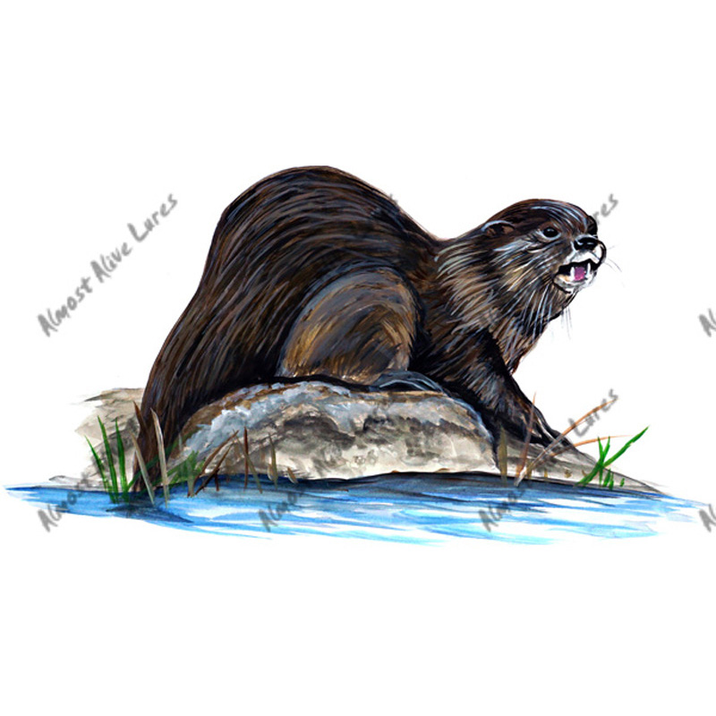 River Otter - Printed Vinyl Decal