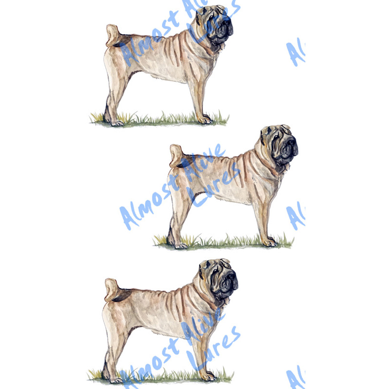 Details about shar pei dog sticker decal car boat auto suv rv camper tailgate trailer