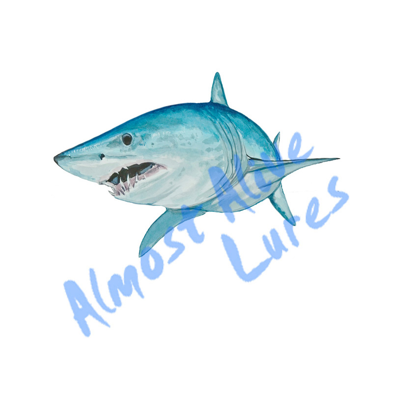 Mako Shark - Printed Vinyl Decal