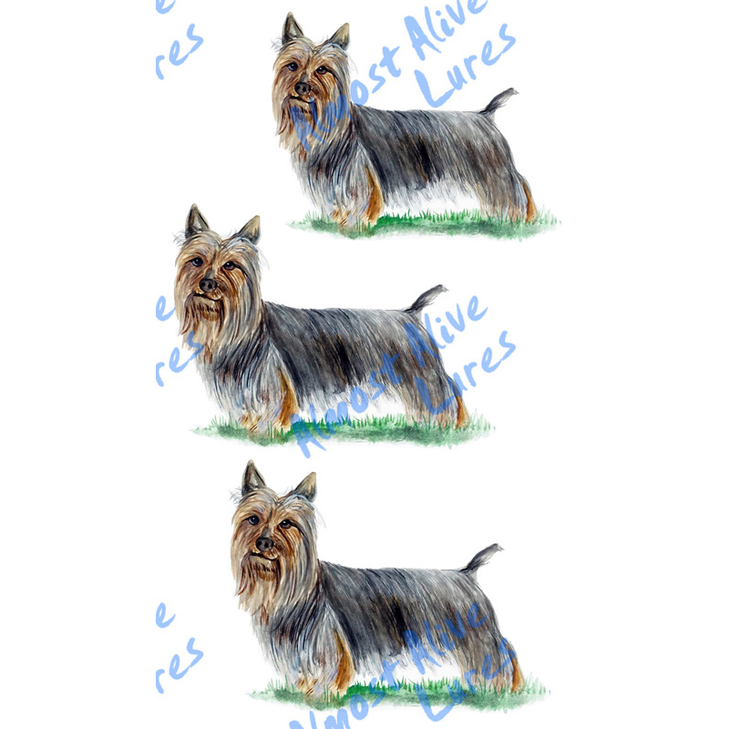 Silky Terrier - Printed Vinyl Decal