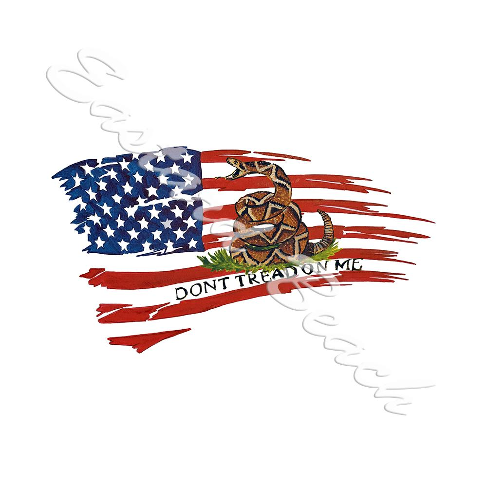 American Flag - Don't Tread On Me