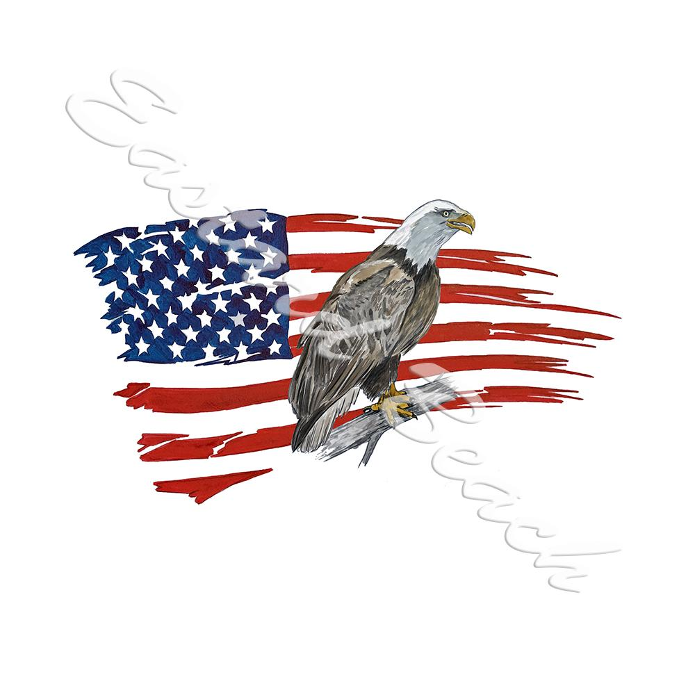 American Flag Tattered Eagle 2