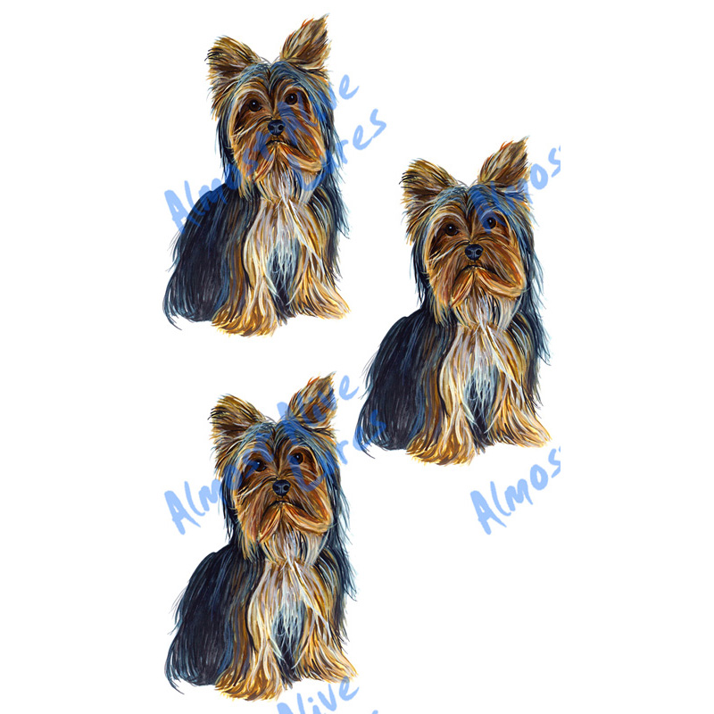 Yorkies - Printed Vinyl Decal