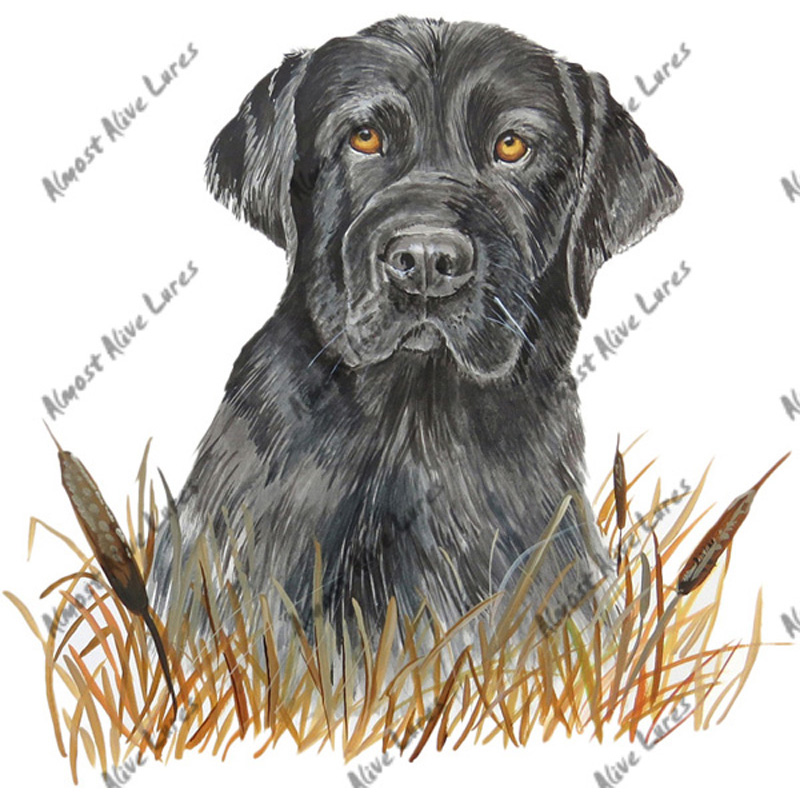 Black Lab Labrador Retriever - Printed Vinyl Decal