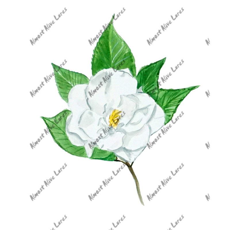 Carnation - Printed Vinyl Decal