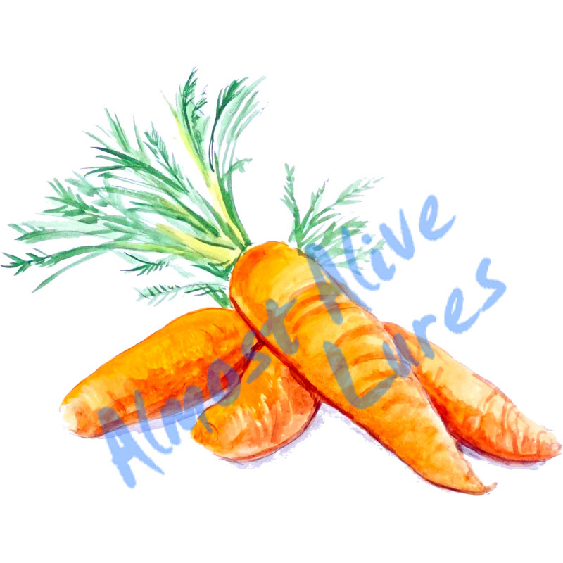 Carrots - Printed Vinyl Decal