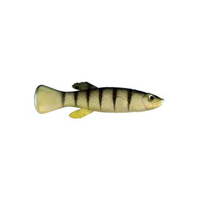 "Almost Alive 6 Pack 2.75"" Soft Mud Minnow Killifish Lure Stripes"