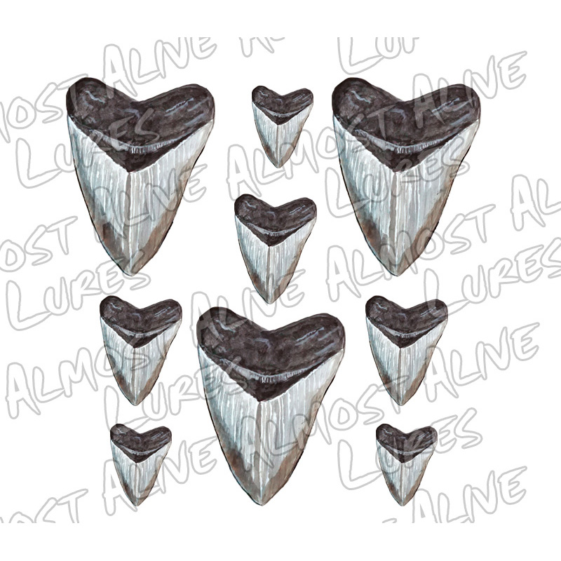 Printed Megalodon Shark-Teeth Decals