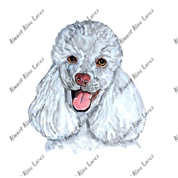 White Poodle - Printed Vinyl Decal
